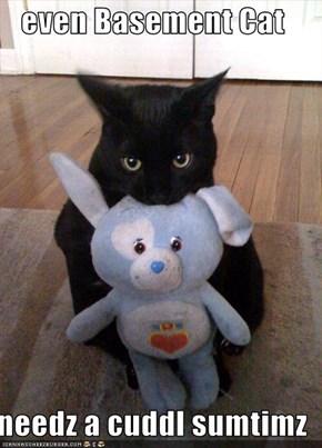 even Basement Cat  needz a cuddl sumtimz