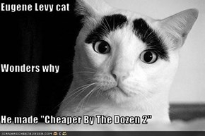 "Eugene Levy cat Wonders why He made ""Cheaper By The Dozen 2"""