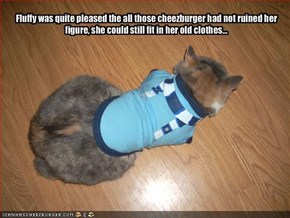 Fluffy was quite pleased the all those cheezburger had not ruined her figure, she could still fit in her old clothes...