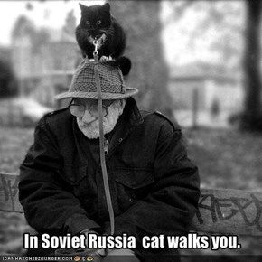 In Soviet Russia  cat walks you.