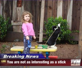 Breaking News - You are not as interesting as a stick