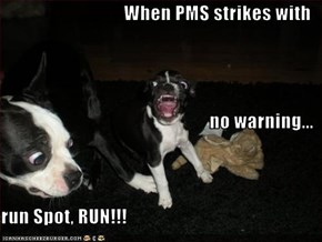When PMS strikes with no warning... run Spot, RUN!!!
