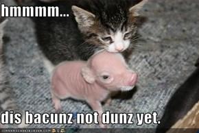 hmmmm...  dis bacunz not dunz yet.