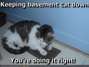 Keeping basement cat down  You're doing it right!