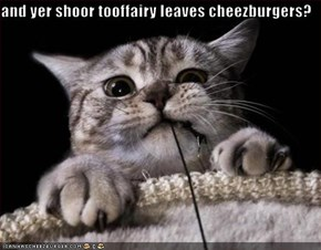 and yer shoor tooffairy leaves cheezburgers?