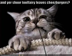 and yer shoor tooffairy leaves cheezburgers?