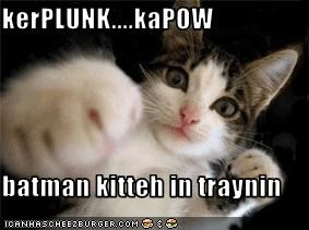 kerPLUNK....kaPOW  batman kitteh in traynin