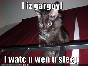 I iz gargoyl  I watc u wen u sleep