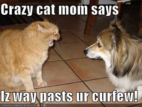 Crazy cat mom says  Iz way pasts ur curfew!