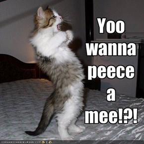 Yoo wanna peece a mee!?!