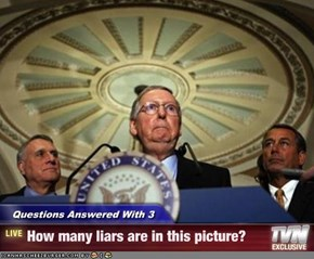 Questions Answered With 3 - How many liars are in this picture?