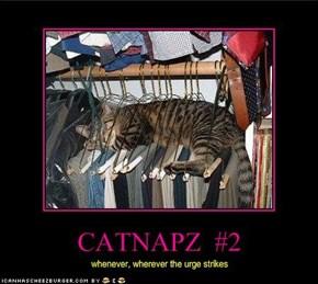 CATNAPZ  #2