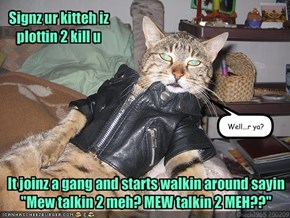 Signz ur kitteh iz plottin 2 kill u
