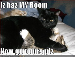 Iz haz MY Room  Now go to urs plz