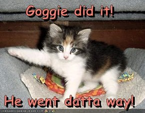 Goggie did it!  He went datta way!