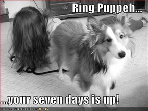 Ring Puppeh...  ...your seven days is up!
