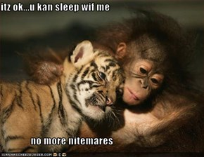 itz ok...u kan sleep wif me                 no more nitemares