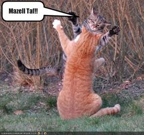Mazell Taf!!