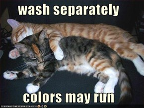 wash separately  colors may run