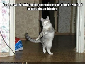 As steve watched his cat tap dance across the floor, he realised he should stop drinking.