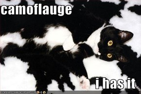 camoflauge  i has it