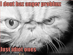 I dont haz anger problmz  Just idiot ones