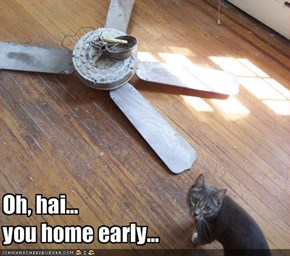 Oh, hai...