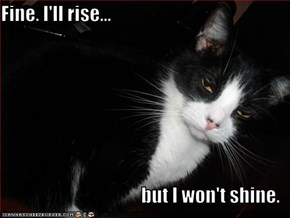 Fine. I'll rise...  but I won't shine.