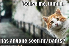 'scuse me, uumm...  has anyone seen my pants?