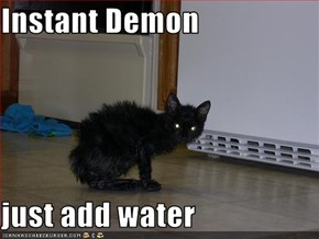 Instant Demon  just add water