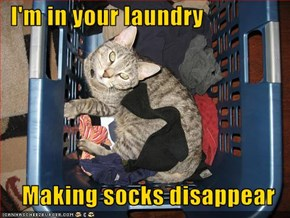 I'm in your laundry  Making socks disappear