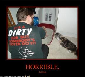 HORRIBLE,
