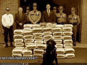 I get cheezburgers now?