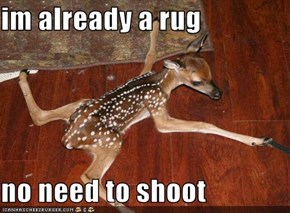 im already a rug  no need to shoot