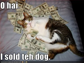 O hai.  I sold teh dog.