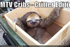 MTV Cribs--Critter Edition