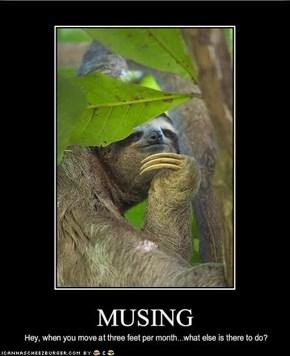 MUSING