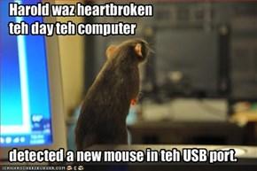 Harold waz heartbroken teh day teh computer detected a new mouse in teh USB port.