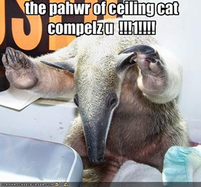 the pahwr of ceiling cat compelz u  !!!1!!!!