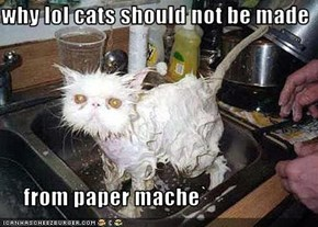 why lol cats should not be made       from paper mache`