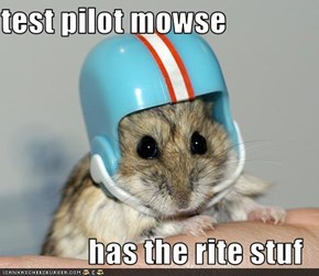 test pilot mowse  has the rite stuf