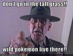 don't go in the tall grass!!  wild pokemon live there!!
