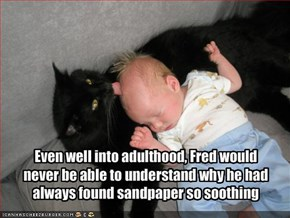 Even well into adulthood, Fred would never be able to understand why he had always found sandpaper so soothing