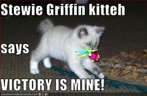 Stewie Griffin kitteh says VICTORY IS MINE!