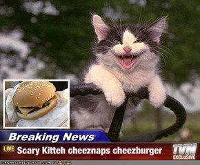 Breaking News - Scary Kitteh cheeznaps cheezburger
