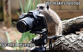 We makes lolz too  Is called revenge