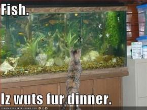 Fish.  Iz wuts fur dinner.