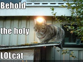 Behold the holy LOLcat