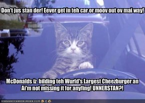 Don't jus stan der! Eever get in teh car or moov out ov mai way!