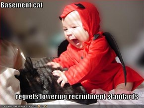 Basement cat  regrets lowering recruitment standards
